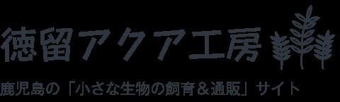 徳留アクア工房/鹿児島のペット飼育&通販サイト